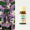 Clary Sage organic 5ml