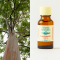 Eucalyptus organic 20ml