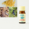 Frankincense Relaxation Blend 5ml