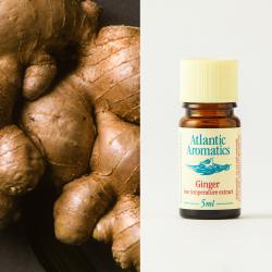 Ginger C02 Organic extract 5ml