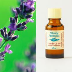 Lavender organic 20ml