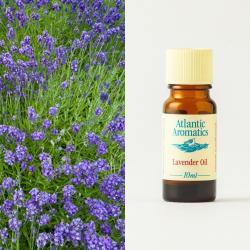 Lavender 10ml