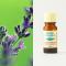 Lavender organic 10ml