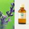 Lavender organic 50ml