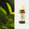 Ravintsara organic 10ml