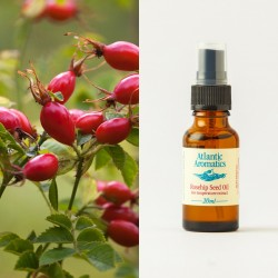 Rosehip Seed CO2 organic 20ml