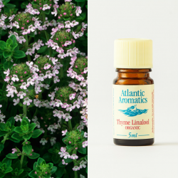 Thyme Linalool organic 5ml